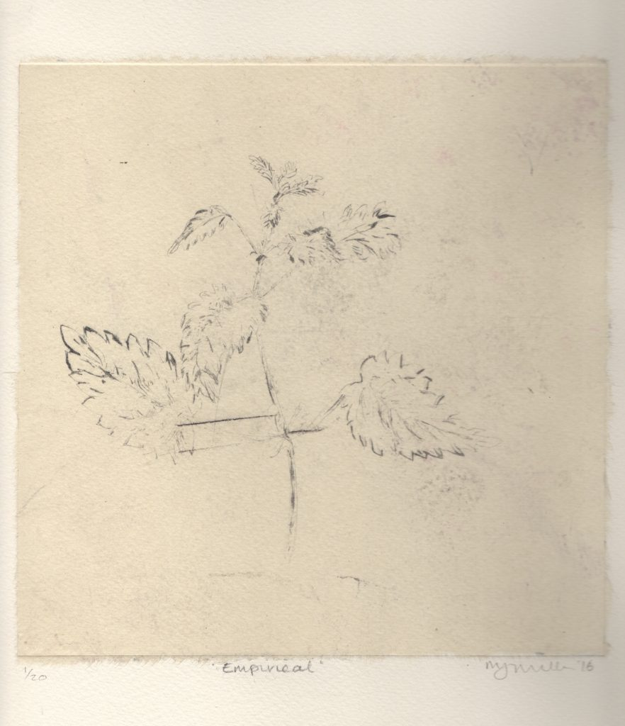 Drypoint with Chine Colle