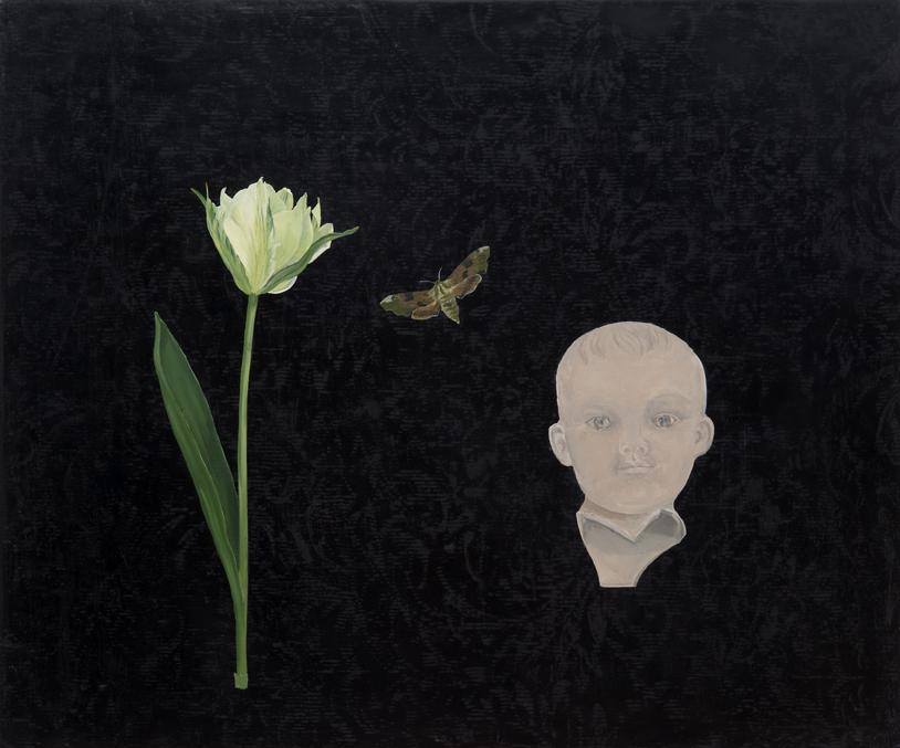 moth-boy